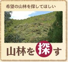 希望の山林を探してほしい 山林を探す