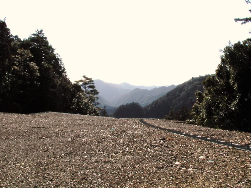 22万坪の広大な山林(普通林=詳細な森林図面有)