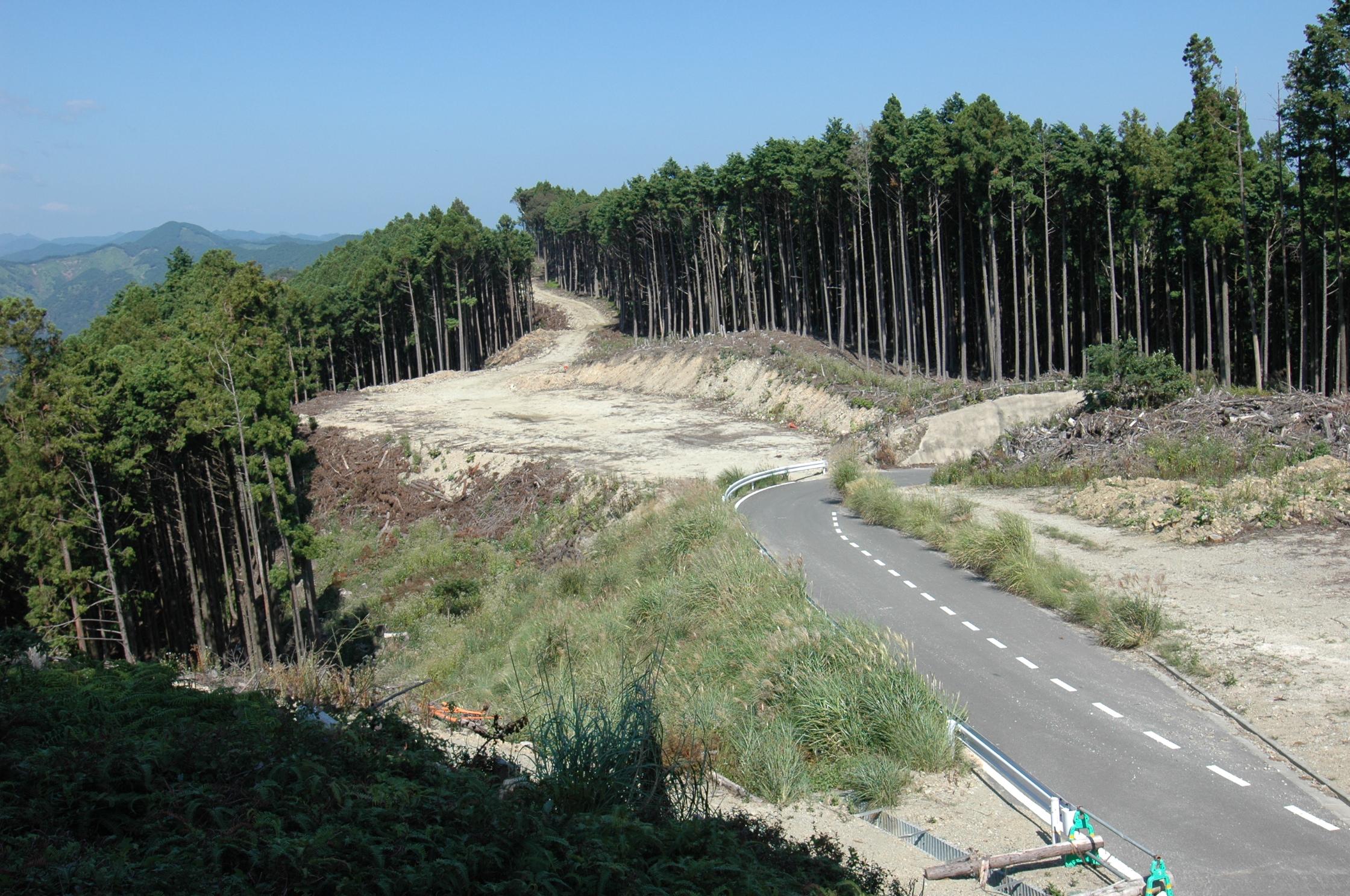和歌山県串本町にある10万坪の広大な山林(普通林)