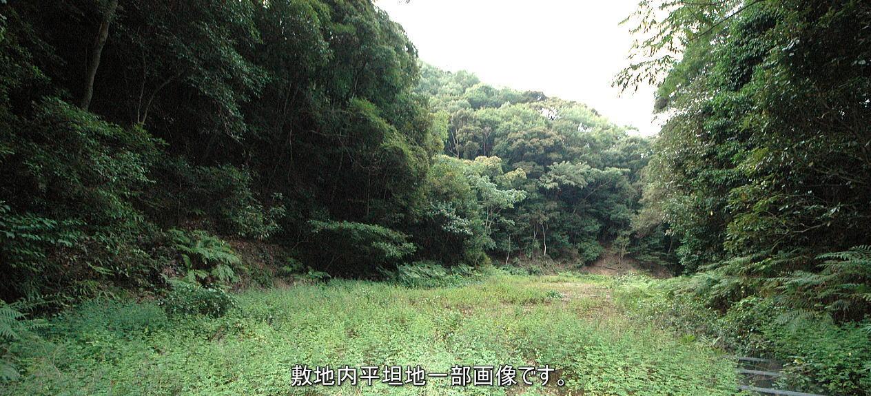 JR串本駅から車で20分で到着する参考実測20万坪の山林(普通林)
