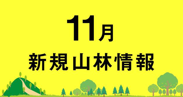11月の山林売買情報