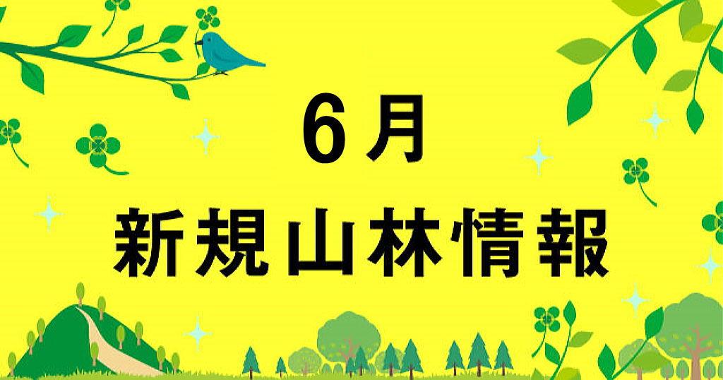 6月の山林売買情報