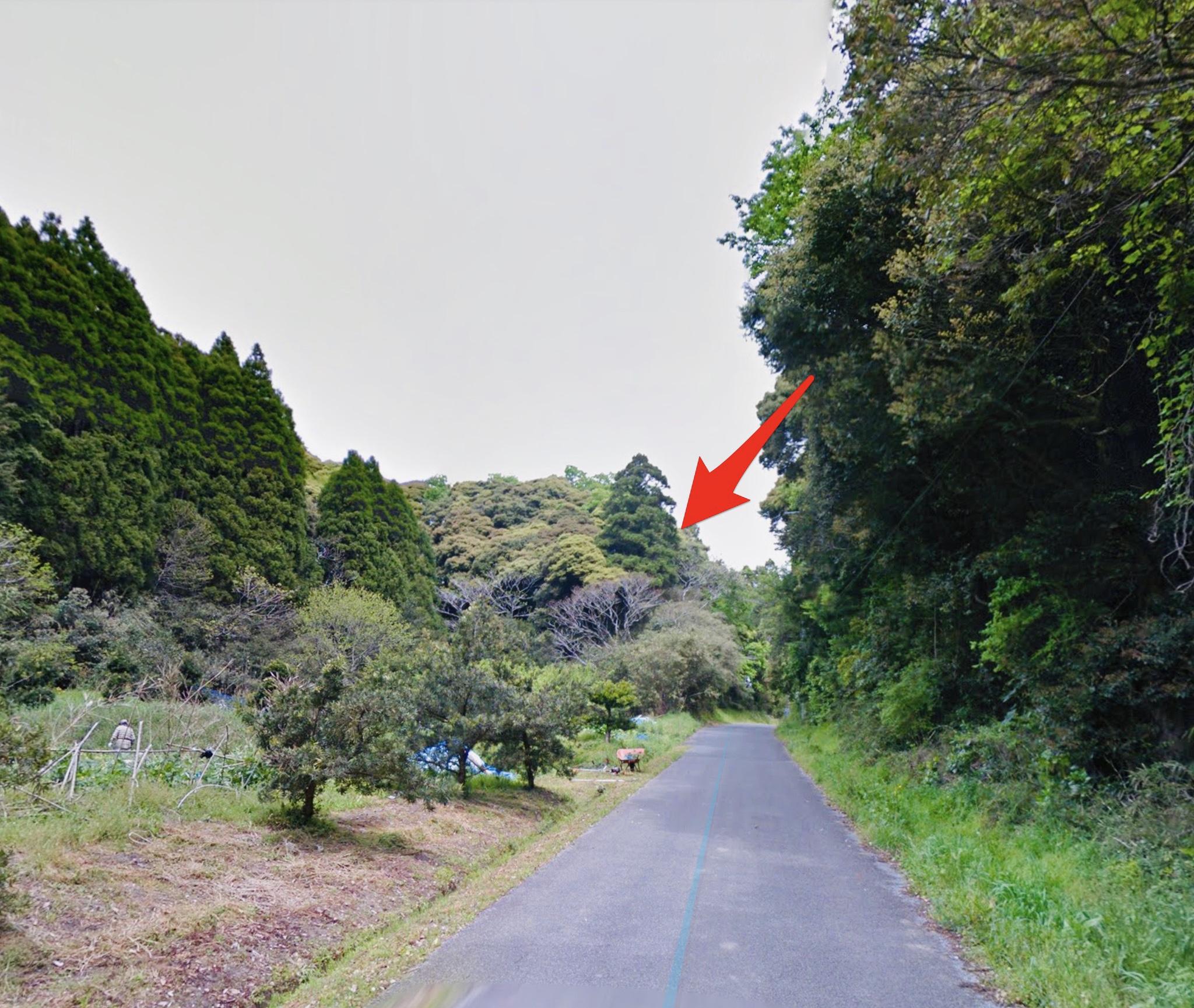 90万円 千葉県長生郡睦沢町(むつざわまち)にある1万坪の山林(普通林)です。