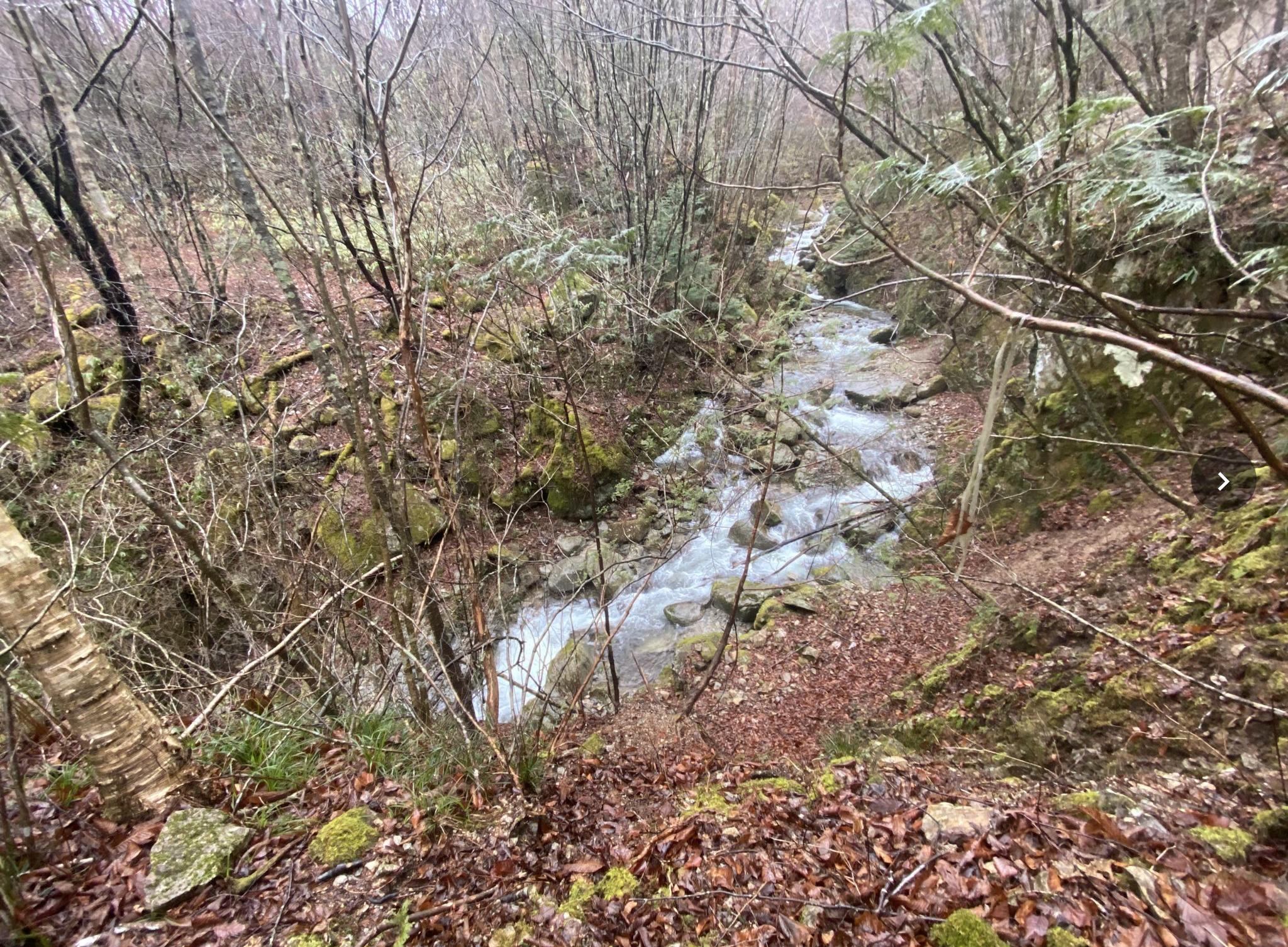 長野県下伊那郡平谷村にある実測168万坪の広大な普通林です。自費で測量もされています。7800万円