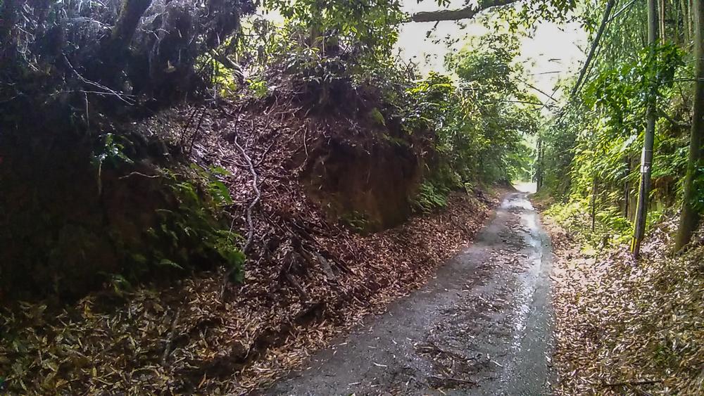 ㉗一部土塁が開削された箇所 坂道左