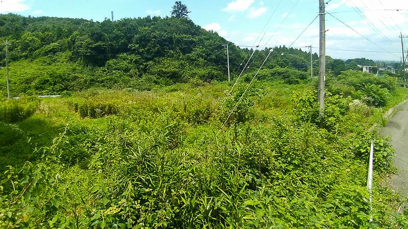 埼玉県大里郡寄居町の山林、畑、宅地  合計1万4000坪。 650万円
